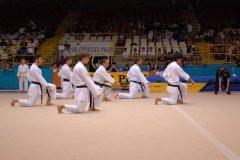 corsi-karate-pavia-bambini-adulti14