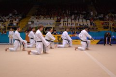 Karate_ITDA_International_Tactical_Defense_Academy_Maestro_Andrea_Bove_33